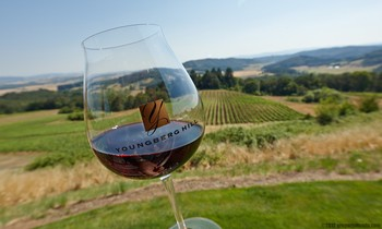 Oregon Pinot Noir Glass